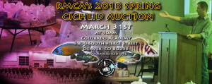 AuctionSpring2018