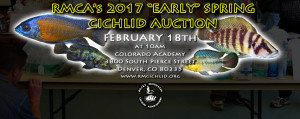 AuctionSPRING2017